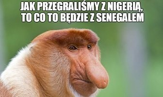 """""""Lewy"""" pudłował, sędzia się mylił, a fani się martwią. Memy po meczu Polska - Nigeria"""