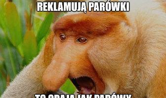 Mundial 2018. Nikt po nas nie będzie płakał, Laskowski najlepszy - memy po meczu Polska - Kolumbia (galeria)