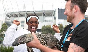 Waran przeraził Sloane Stephens, wąż - Kim Clijsters. Niecodzienne zdjęcia z Australian Open (galeria)