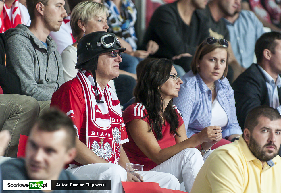 Kibice na meczu Polska - Austria