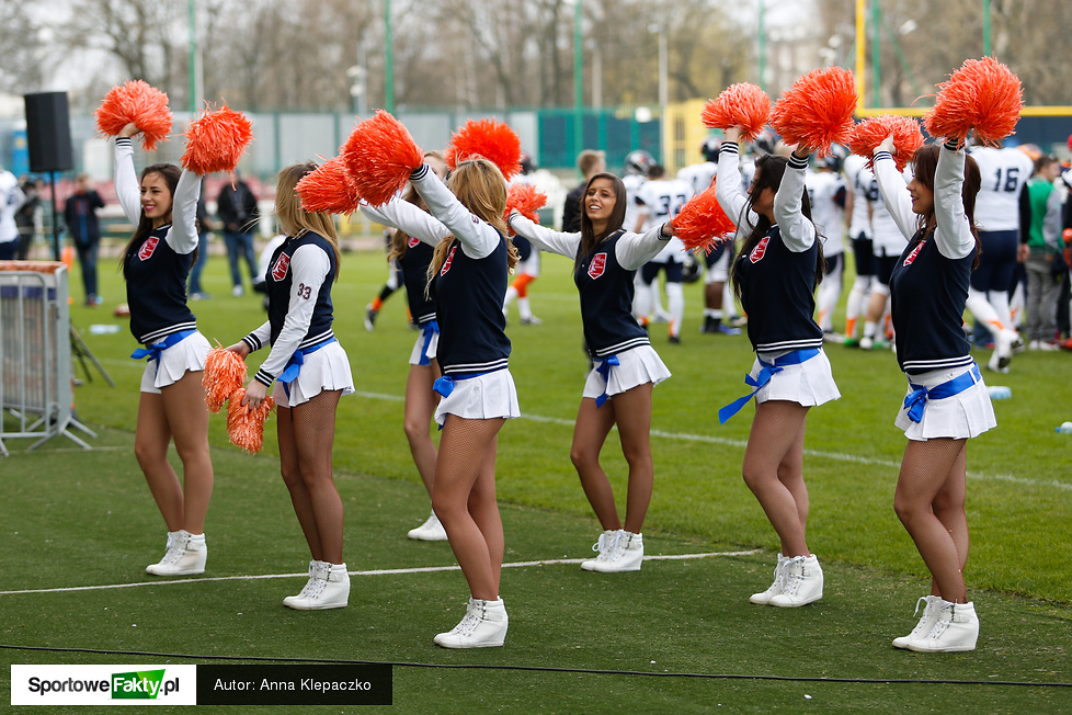 Cheerleaders na meczu PLFA Warsaw Eagles - Seahawks Gdynia