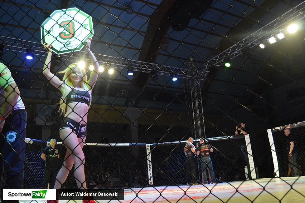 Ring Girls gali Time of Masters - Real Force w Sopocie (galeria)