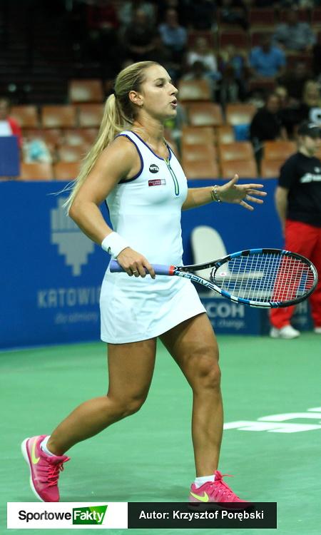 WTA Katowice: Dominika Cibulkova - Francesca Schiavone 2:0 (galeria)