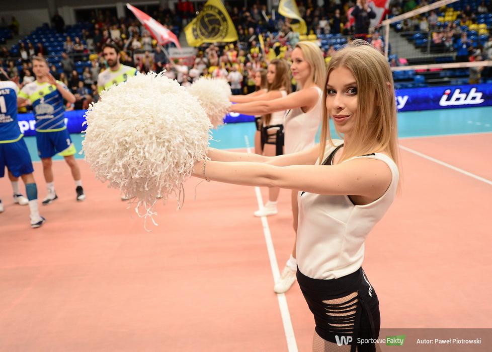 Cheerleaders Bełchatów tańczą również dla IBB Polonii Londyn (galeria)